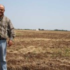 Luis Carlos Aguirre Piña, of Chihuahua, Mexico, works at an organic wheat farm and cattle ranch in Fairview. He is in the U.S. on an H-2A temporary agricultural work visa.